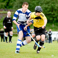 Fort William v Newtonmore (Orion Premiership) - 23rd June 2012