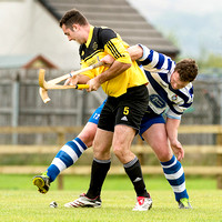 Fort William v Newtonmore (Orion Premiership) - 21st Sept. 2013
