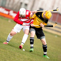 Fort William v Lochaber (North Div. 2) - 29th March 2014