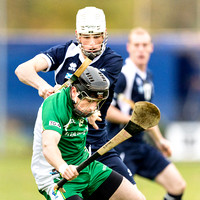 Marine Harvest Shinty / Hurling 2nd Test - Scotland v Ireland - 2nd Nov. 2013