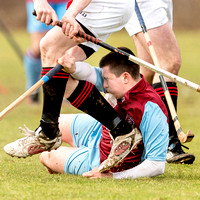 Strathglass v Glenurquhart (Macdonald Cup) - 22nd Feb. 2014